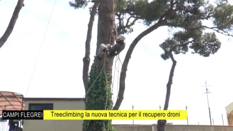 Recuperare drone da albero
